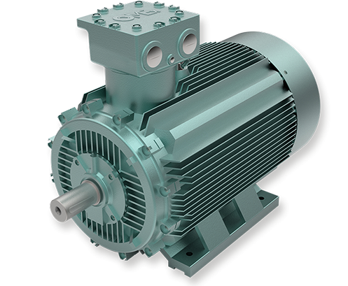 OMEX Low Voltage Motors
