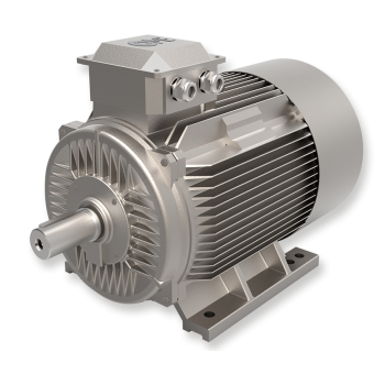 IE1 Standard Electric Motors