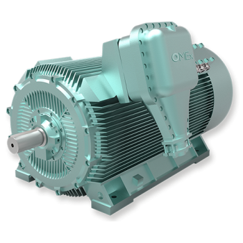OMEX High Voltage Motors